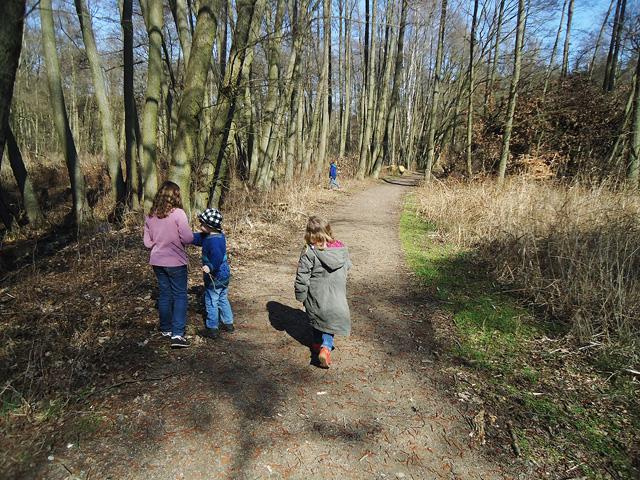 Spaziergang im Müritz Nationalpark - Wunderschönes Naturschutzgebiet in Deutschland