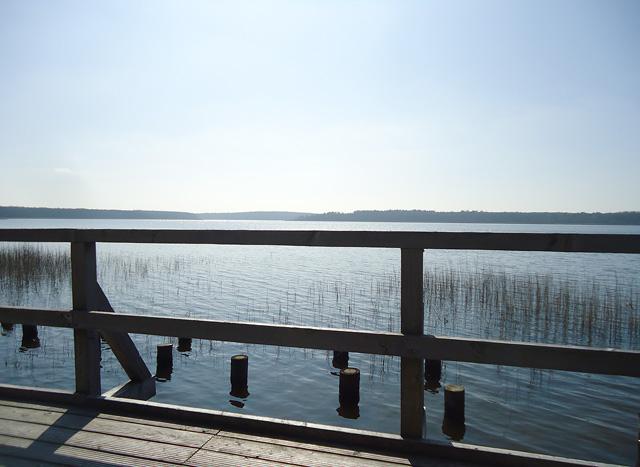 Fleesensee im Müritz Nationalpark